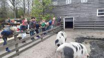 Kinderboerderij kleuters 024